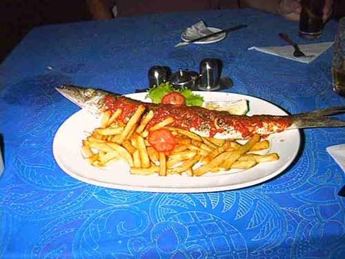 a28-popo-barracuda